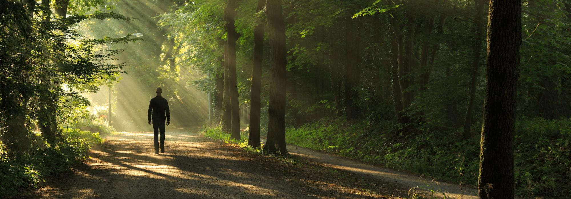 man går på skogsväg